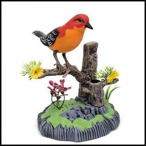 Heartful Bird buy sound activated heartful bird at best price in india on naaptol