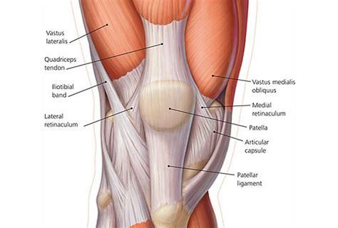 infiammazione ginocchio interno i vizi angolari ginocchio perch 233 232 importante
