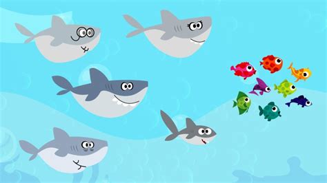 baby shark jawa youtube baby shark song animal song for kids youtube