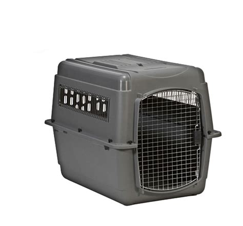 travel kennel large travel crate petmate sky kennel 40lx 27wx 30h inches dogspot