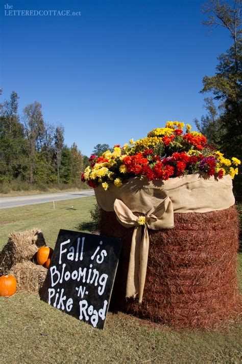 Where To Buy Hay Bales For Decoration by Hay Bale Halloween 2 Jpg Photo This Photo Was Uploaded By
