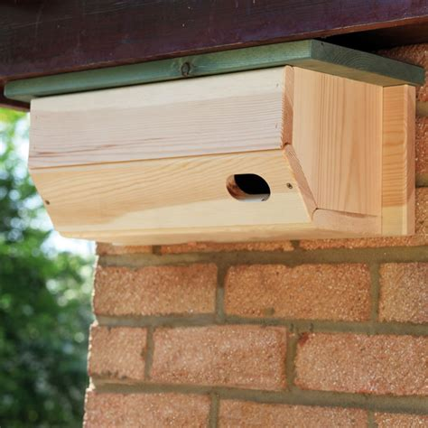 bird nesting boxes plans images