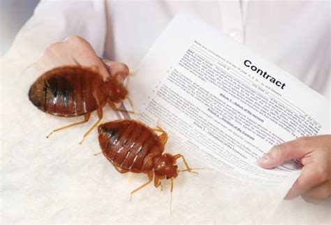 hazards  overpromising pct pest control technology