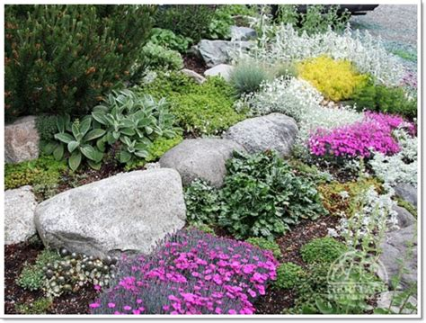 30 Beautiful Rock Garden Design Ideas Garden Of Rocks