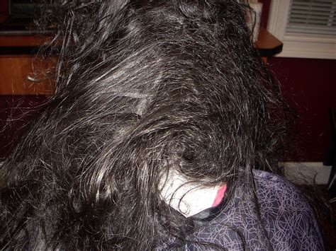 Meaning Of Matted Hair by Hairdetangler Home