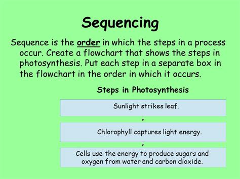 steps of photosynthesis flowchart steps of photosynthesis flowchart 28 images