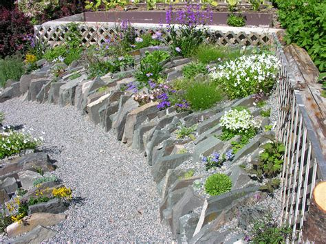 Scottish Rock Garden Forum Rock Garden Society Rock Garden Design And Construction American Rock Rock Gardening General