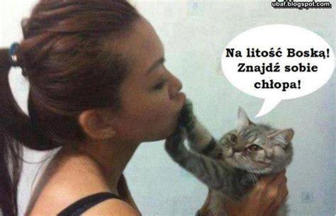 Cat Lover Meme - znajdź sobie chłopa memy kot na wesoło śmieszne