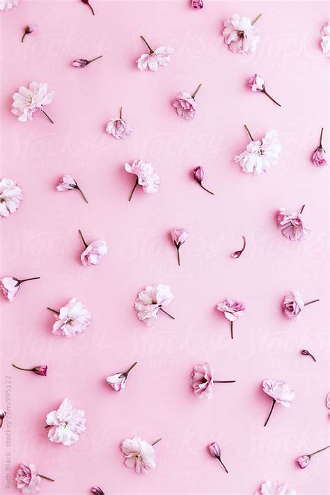 wallpaper hp pink cute screensavers for iphone impremedia net