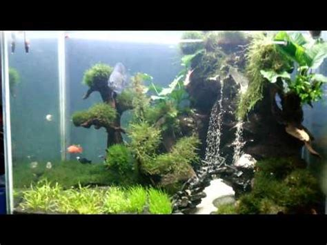 rahasia membuat aquascape membuat air terjun mini 8 doovi