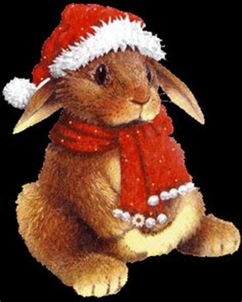 1000 images about christmas animals on pinterest