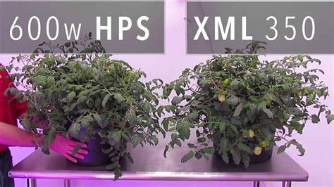 Led Grow Lights Vs Hps by Xml 350 Led Grow Light Vs 600w Hps Grow Light