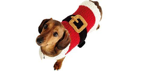 knitting pattern for christmas dog coat knit a seasonal santa dog coat for christmas