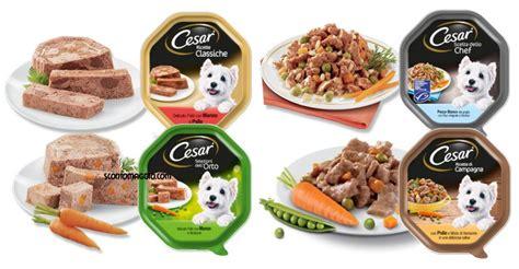 buoni sconto alimenti diventa tester cesar alimenti per cani scontomaggio