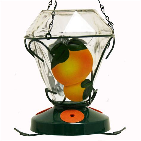 Birdscapes Feeders shop birdscapes glass oriole feeder at lowes