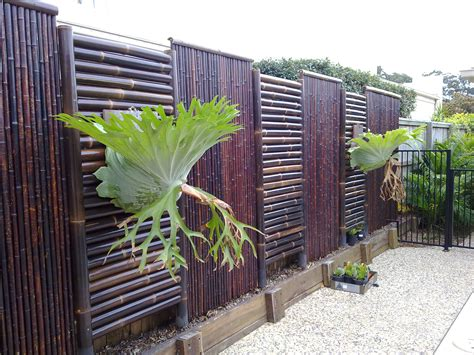 ilandscape products bamboo screening