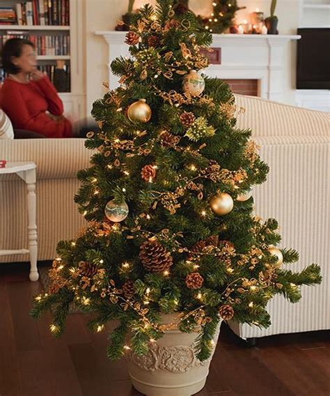 live decorated trees live trees for eco friendly decor green ideas