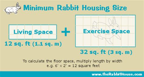 Design House Plans For Free Planning A Homemade Rabbit Cage