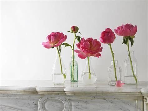 Single Flower Vases by Diy Single Flower Vase Ambrosia
