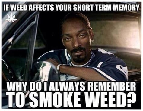 Funny Weed Memes - 160 best images about everything is coming up weed and