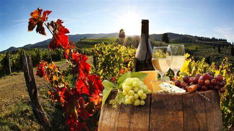 Wine and Cheese Tour Montalcino   Tour Fantastique