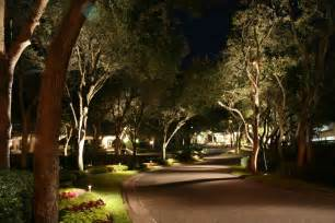 backyard landscape lighting backyard creations outdoor lighting landscape lighting