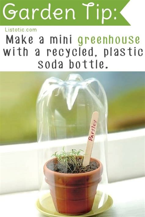 house gardening tips 25 best ideas about mini greenhouse on pinterest small greenhouse small plastic
