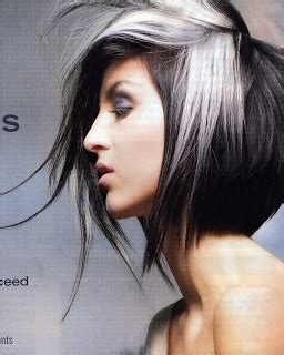 gray hair streaked bith black 1000 ideas about silver highlights on pinterest gray