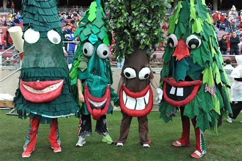 tree mascot photo stanford mascot s tongue is bso