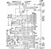 83 84 Hazard/exterior Body Light Wiring Diagram  Ford