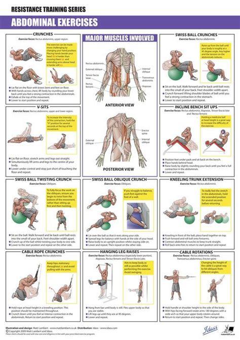 abdominals exercises ot exercises  handouts