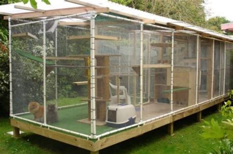 cat enclosures diy 26 safe and smartly organized outdoor cat areas digsdigs