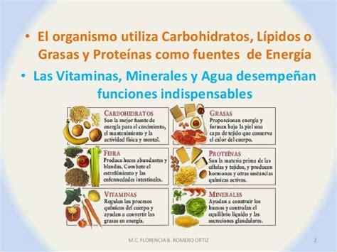 proteinas y minerales los nutrientes b 225 sicos carbohidratos proteinas y lipidos