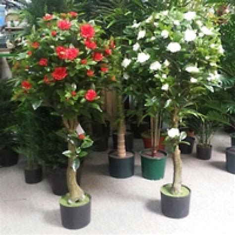 camellia topairy tree artificial trees  flowers