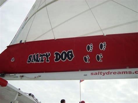 cumpleaños en catamaran puerto rico salty dog catamaran fajardo lo que se debe saber antes