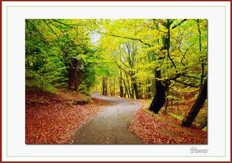 imagenes otoño galicia fotos de cabaleiros fotos de tordoia fotos de pueblos