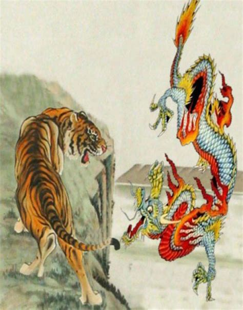 tattoo dragon tiger meaning dragon and tiger symbolism and meaning