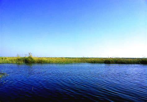 In The Lake lake mariout