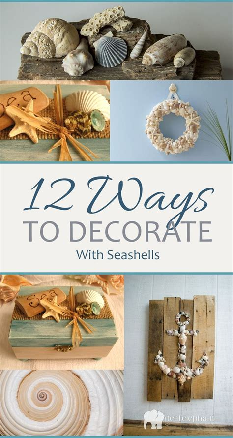 25 best ideas about seashell decorations on