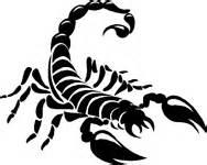 scorpion attack sticker car stickers