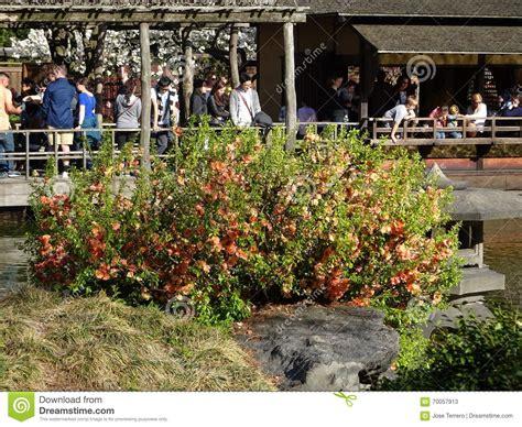 Garden City Ny Part Time Botanic Garden April 2016 Part 3 39 Editorial