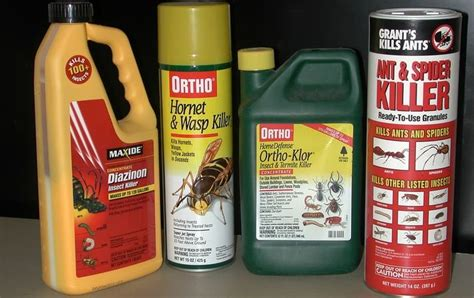 toxic household items 10 poisonous items you probably have in your home page 3