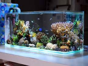 Design aquarium 187 design and ideas