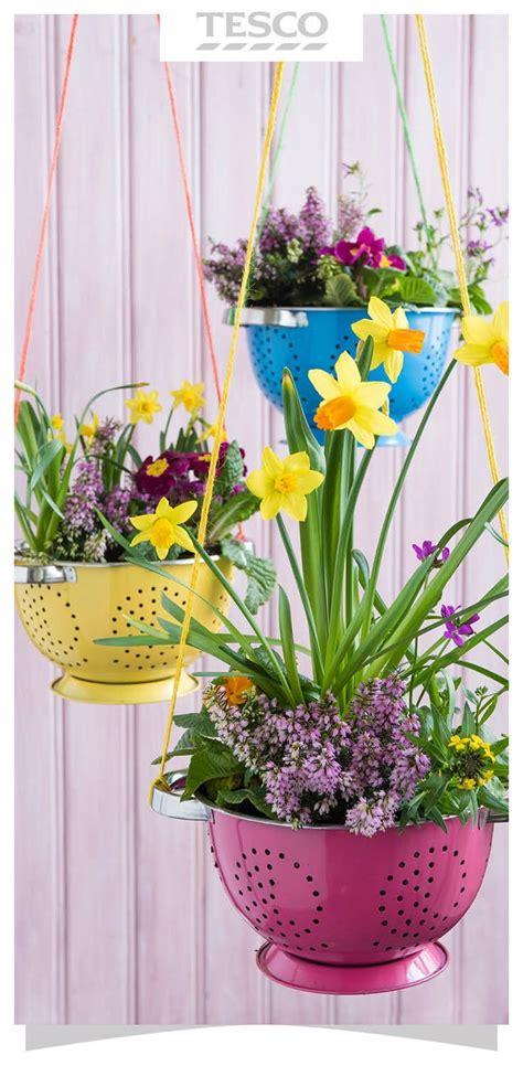 hanging planter basket 25 best ideas about hanging basket stand on pinterest