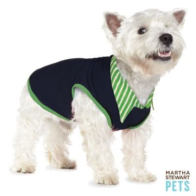 petsmart clothes 11 best images about clothes and accessories for rex on cutest dogs cover