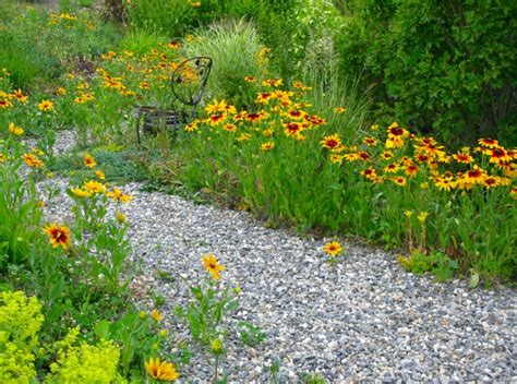 wildflower garden decor ideas 15 interesting wildflower garden ideas design inspirational