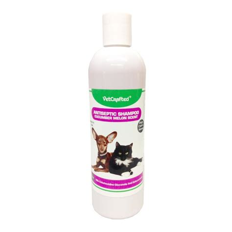 antiseptic for dogs vetcrafted antiseptic shoo w cucumber melon scent 12 oz for dogs cats and horses