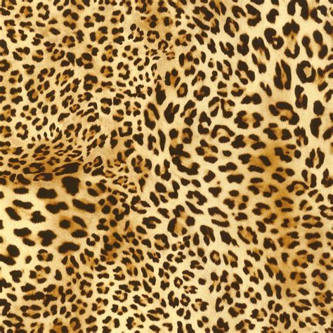 Animal Print Items To Go For by Image Gallery Animal Print All Things Printed