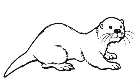Otter Coloring Page otter printable coloring pages