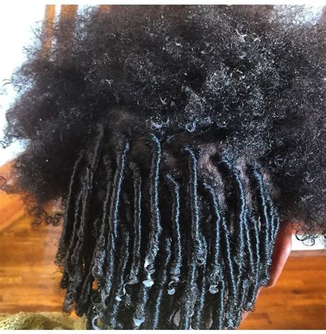 starting dread locs mediun length hair 17 best images about locs coils short locs on pinterest